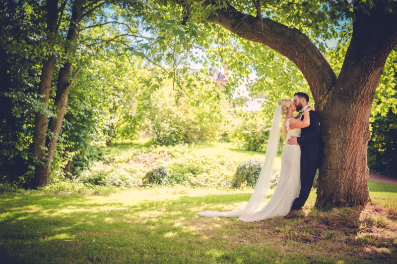 bride groom portrait tree summer